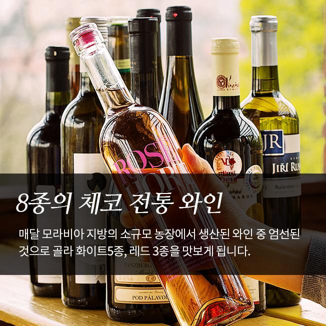 [TASTE PRAHA] 프라하 전통 와이너리(와인) 투어