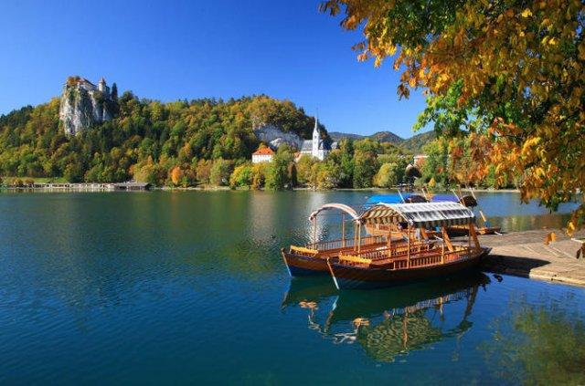 당일 슬로베니아 투어(포스토이나+블레드)