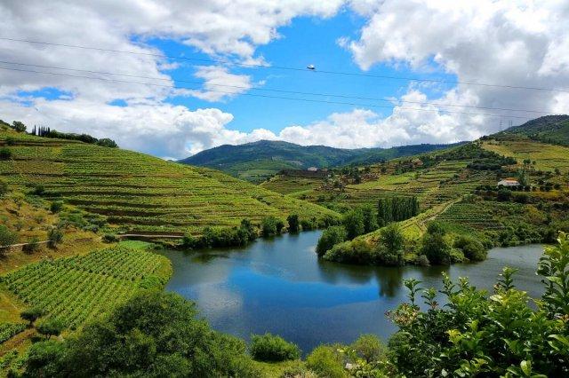 最高품질 와인 산지 포르투갈에서 즐기는 와인투어