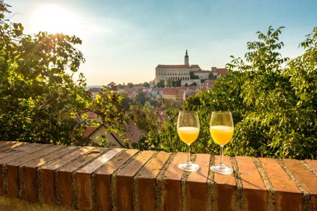 모라비아  와인의 향 - 아름다운 고성과  와인을 만나는 하루 (남부 모라비아로 떠나보자)