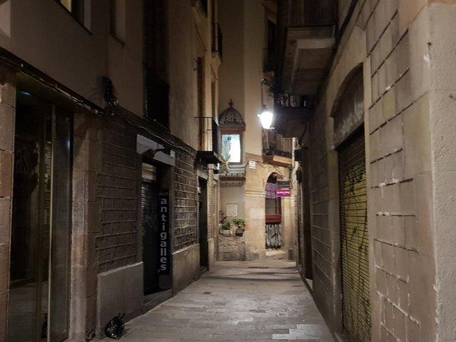 소규모! 두근두근 로맨틱 고딕지구&바르셀로나투어