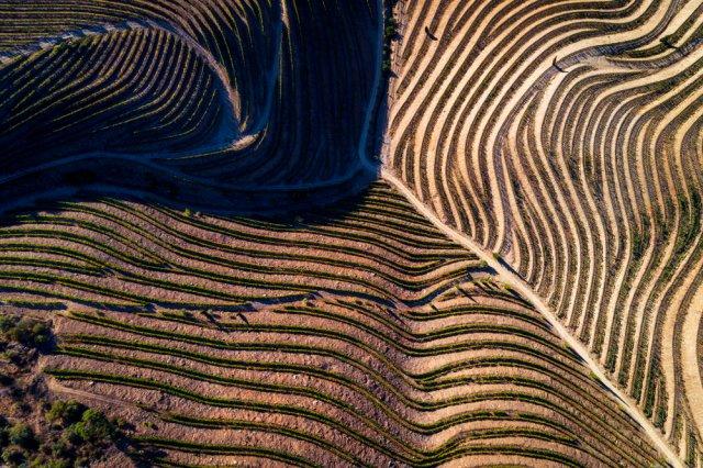 포르투갈 와인산지 하면 여기! DOURO VALLEY